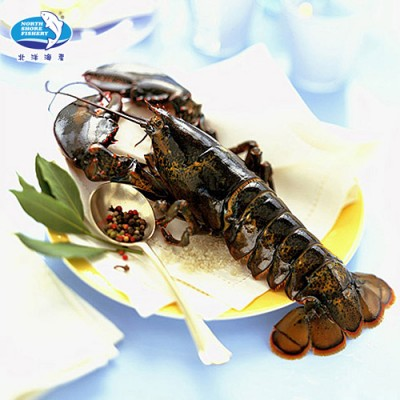 wild-lobster-whole-raw